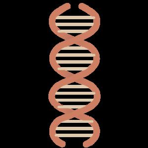 BioHernia liesbreukoperaties zonder matjes
